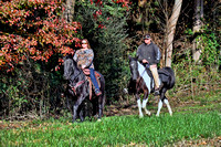 NC Horse Council Trail Pictures 11-21-2015